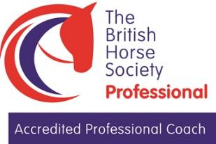 Accredited Professional Coach